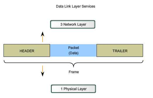 A frame in data link layer
