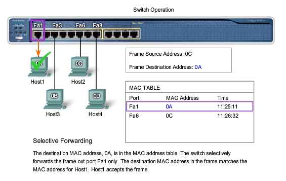 switch operation MAC table