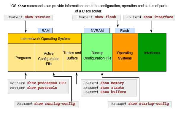 Configuring and Testing a Network