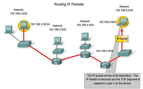 Day One:  Routing the Internet Protocol